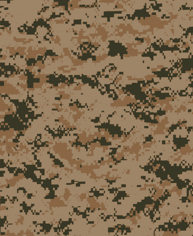 File:Transitional ACU.png