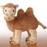 Aimee's Camel stuffed animal