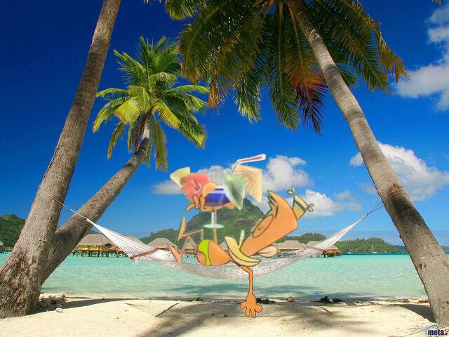 File:Playa-lazlo.jpg