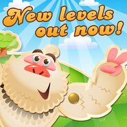 New levels released 141