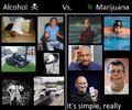 Alcohol versus marijuana. Many photos.jpg