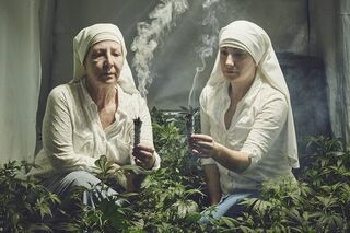 Cannabis-growing nuns