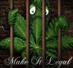 Cannabis behind bars. Make it legal