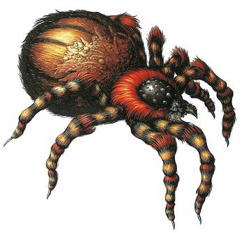 RE Web Spinner
