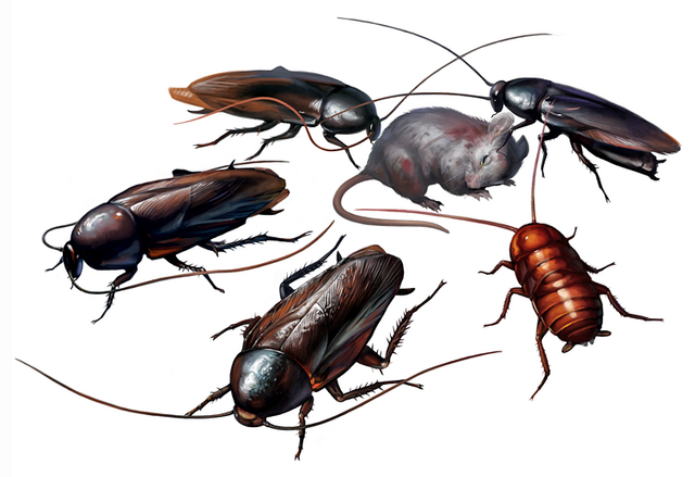 File:RE2Cockroaches.png