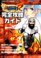 SGnGGBAGuidebook