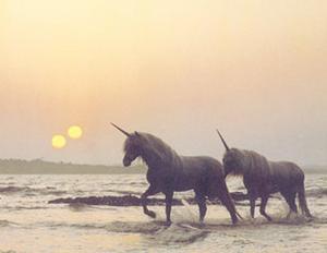 Unicorns on Junope