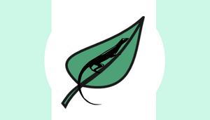 Mishkah Flag