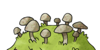 Mosshroom