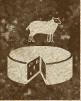 Caravaneer Industry - Sheep Cheese Production