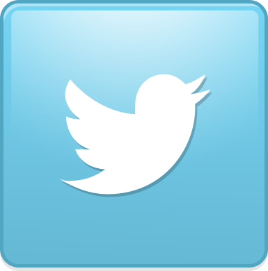 File:Bird twitter new square.png