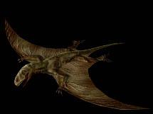 File:Carnivores Dimorphodon.png