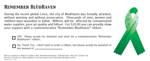 Remember Bludhaven