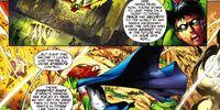 Teen Titans (54)