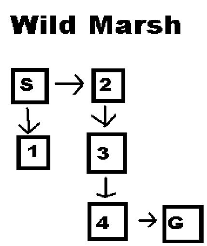 Wild marsh map