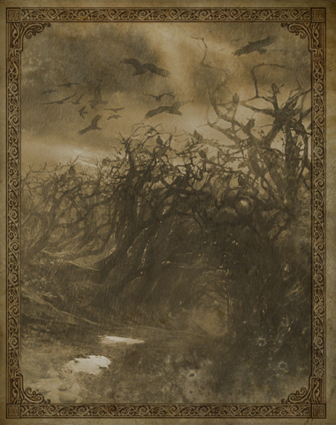File:Bones Forest Travel Book.png