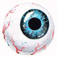 File:NES Game Atlas Eye.JPG