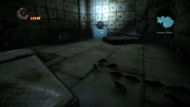 File:Asylum(5).jpg