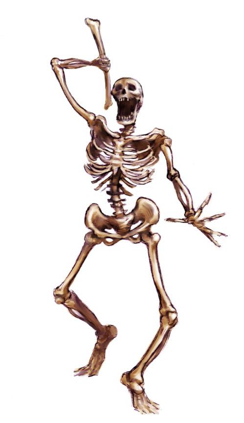 Archivo:Skeleton.jpg