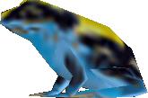 Blue Frog DXC