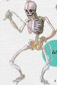 Whip Skeleton