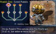 Tn 31 cursed pumpkin