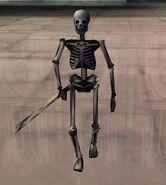 Evolution Skateboarding Skeleton
