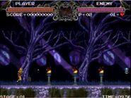 Castlevania Bloodstorm