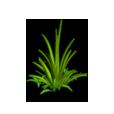 Grass 01 Icon