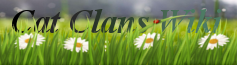Cat Clans Wiki
