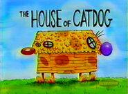 HouseOfCatDog