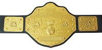 World Heavyweight Championship