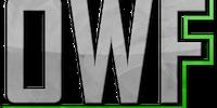 Original Wrestling Federation / Power Fist Wrestling