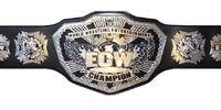 ASW Championship