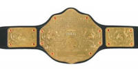 IWT World Heavyweight Championship