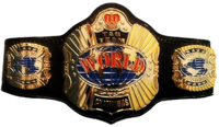 DMWDreamTeamtitlebelt