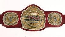 File:TNCA Television Championship.jpg
