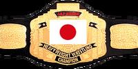 IWT Japanese Championship