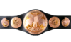Render tag team championship