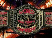 ECW TAG CHAMP