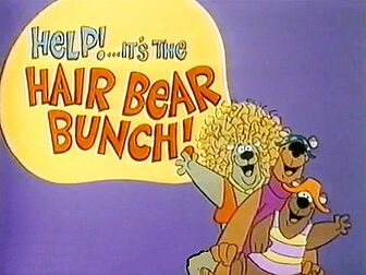 Hair bear bunch