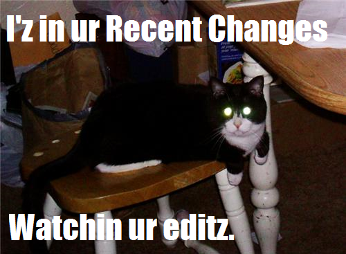 File:Lolcat watching RC.png