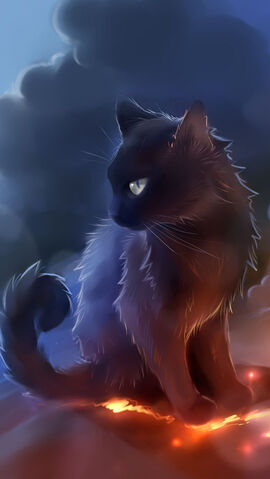 File:Black-Cat-Anime.jpg