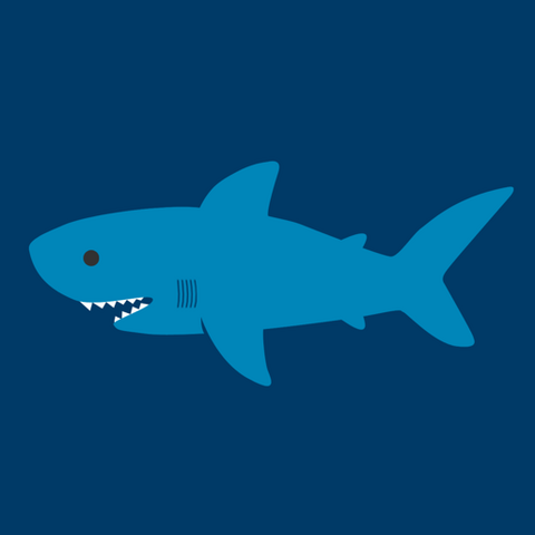 File:Shark Profile.png