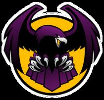 Newjerseybayhawks logo03