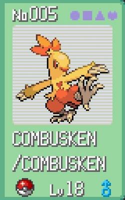 Combusken-2