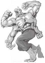 2002 Grond