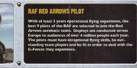 RAF Red Arrows Pilot