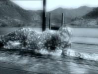 File:198px-Waterdemonpatt2.jpg