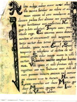 LatinNellScan1